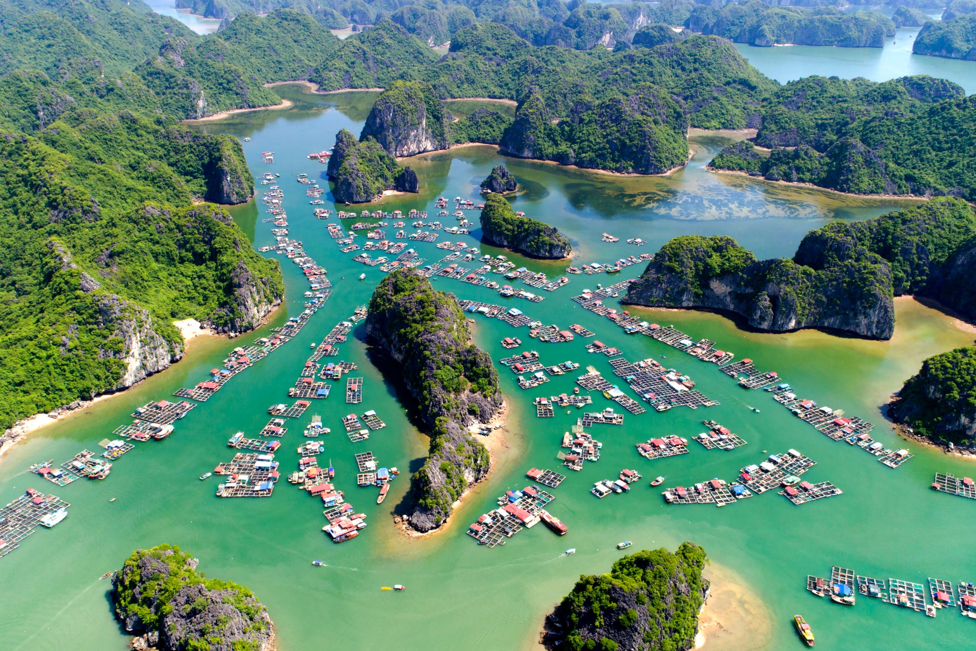12 Days Vietnam Golf Incentive
